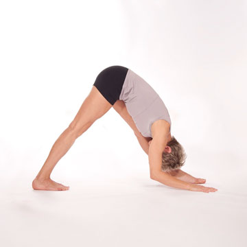 Parsvattonasana -- Intense Side Stretch Pose