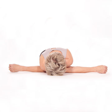 Dwi Bhuja Maksigasana --- Two Arms Dragonfly Pose